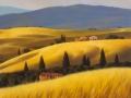 """code NO12 cm 50x50 """"Toscana"""""""